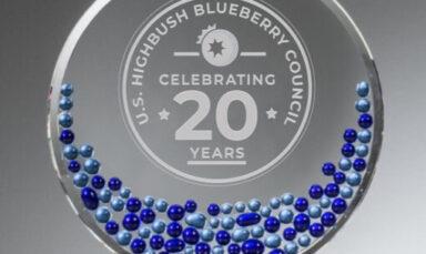 20th-Anniversary-Award-510x555